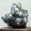 silverskin-0906-1